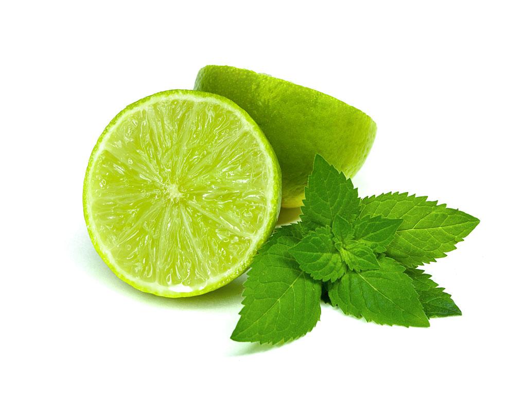 barth fruit citron vert lime. Black Bedroom Furniture Sets. Home Design Ideas