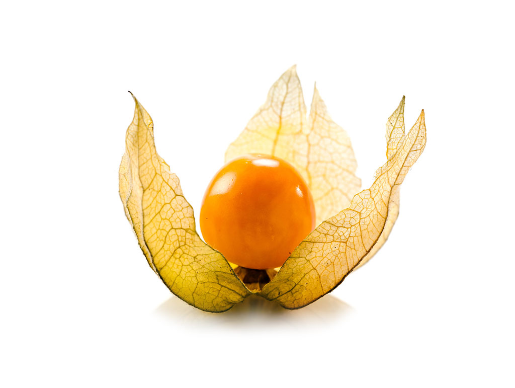 Top Barth Fruit | Physalis #XH_88